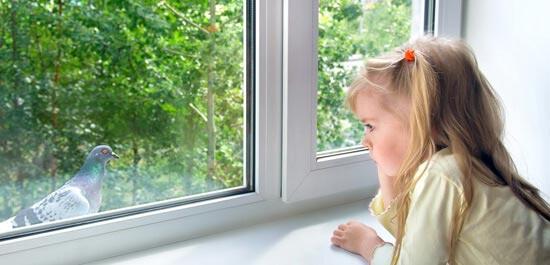 condensation-on-glass-window
